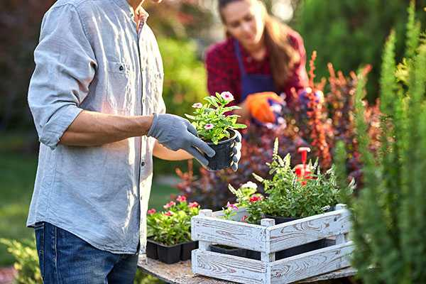 Why Gardening Is Good For You