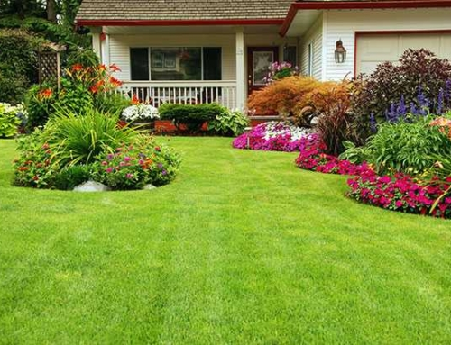 Four Things to Consider Before Starting Your Landscaping Project