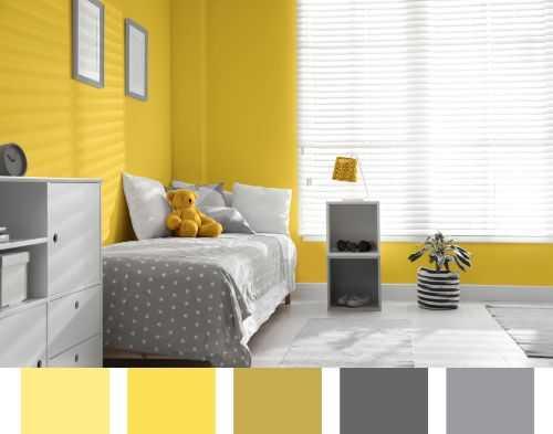 warm color design